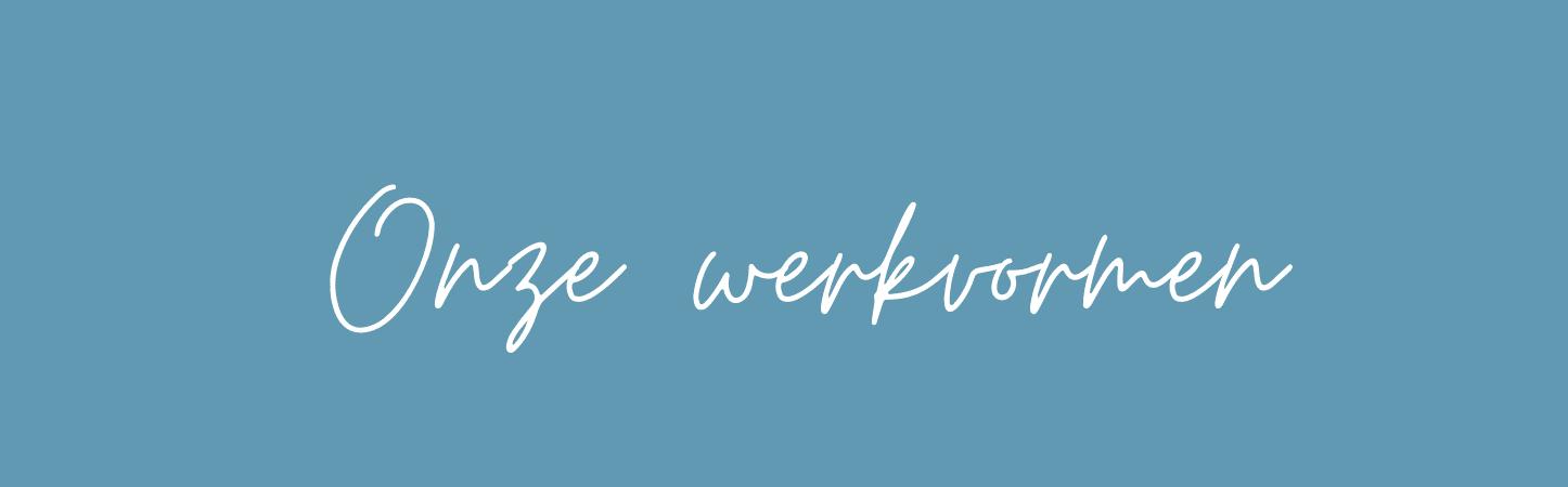 werkvormen voor website wit